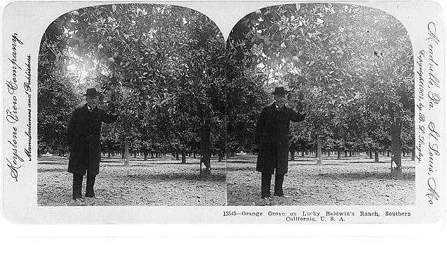 1903 Lucky Baldwin's Ranch Arcadia, ca